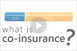What is Coinsurance?